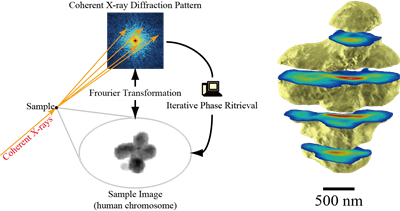 Schematic of X-ray Diffraction Microscopy